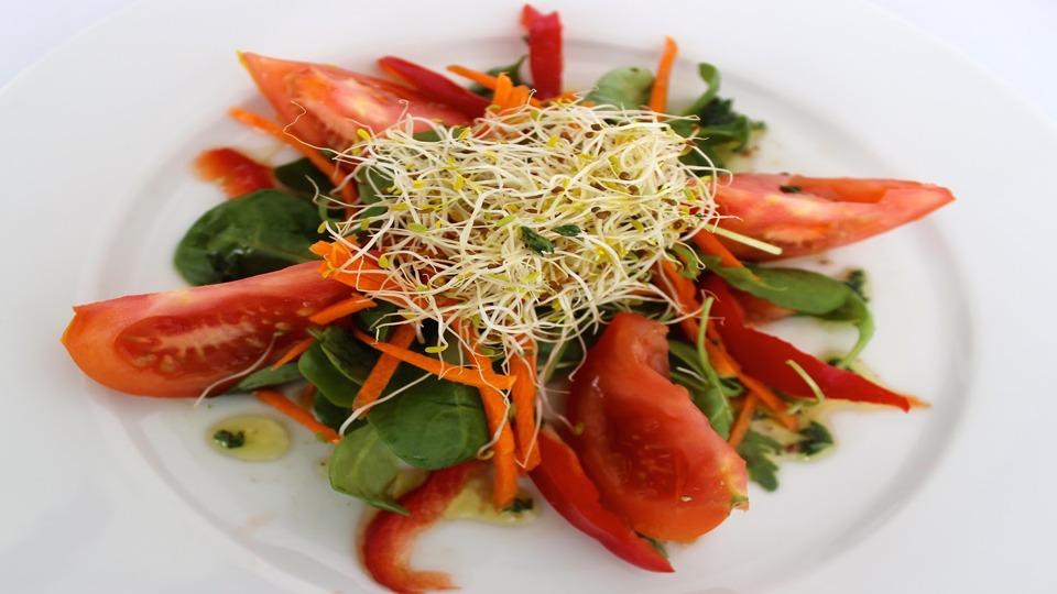 beneficios-da-alfafa-salada