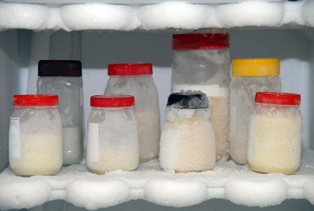 como-armazenar-o-leite-materno-geladeira