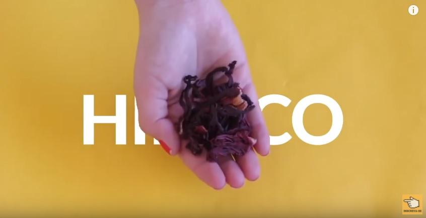 10-segredos-das-indianas-para-o-cabelo-crescer-mais-rapido-hibisco