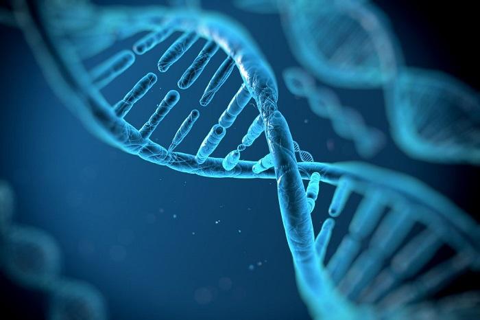 cabelo-com-crescimento-assimetrico-qual-e-o-motivo-dicas-para-igualar-os-fios-genetica