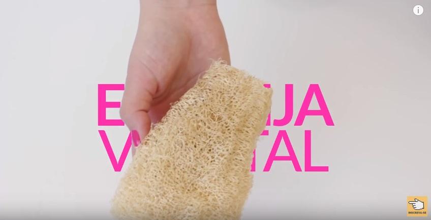 melhores-receitas-caseiras-para-estrias-esponja-vegetal