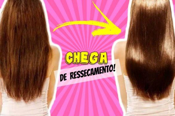 melhores-receitas-para-cabelos-ressecados