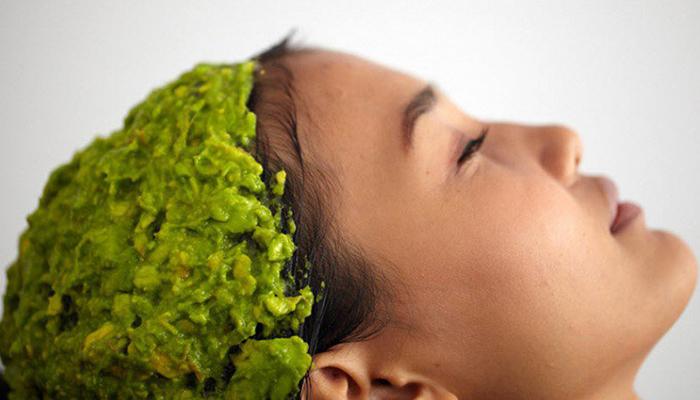 beneficios-do-abacate-para-cabelo-pele-e-corpo-cabelo
